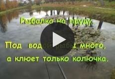 Рыбалка на пруду.